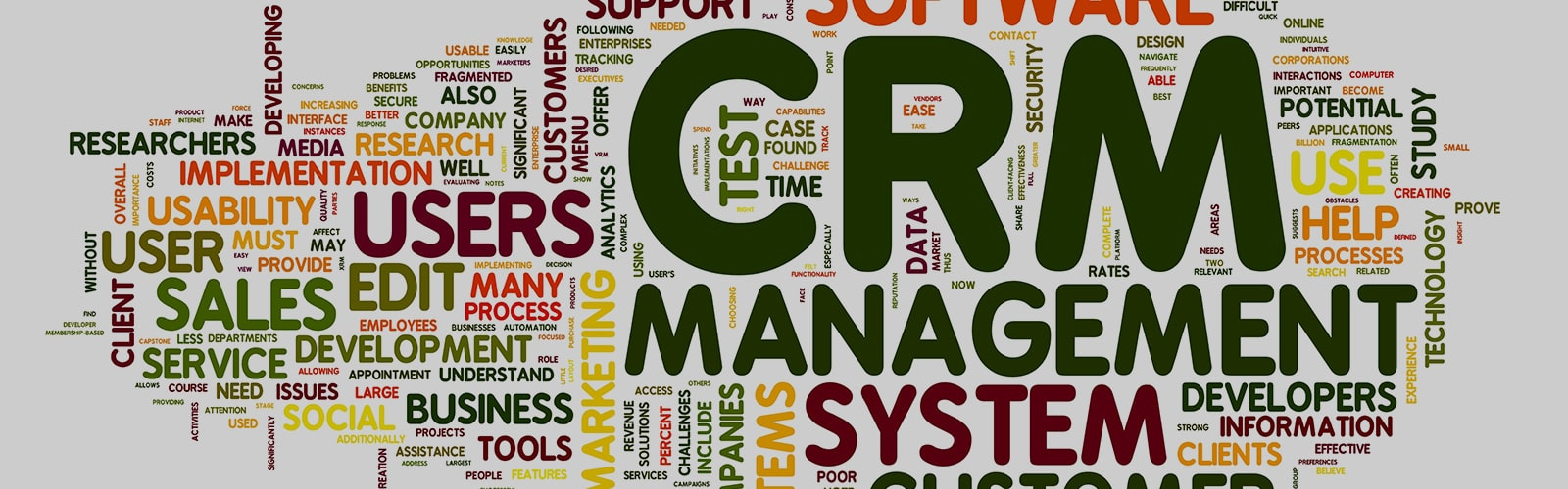 Cloud-based loyalty CRM